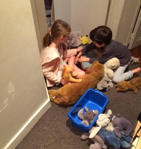clinique vétérinaire de campagne